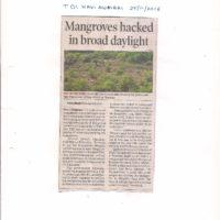 TOI Navi Mumbai 25.11.16 – Mangroves hacked in broad daylight