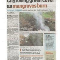 City losing green cover as mangroves burn – Hindustan Times, Mumbai dated 17th November 2017